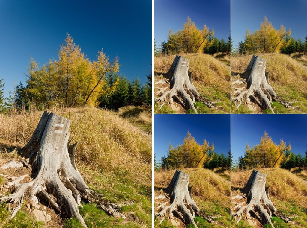 Lens Defects: Learn to Use LCPs (and DCPs): Default settings without using a DCP (left) and with the profiles named Standard, Neutral, Landscape, and Vivid.