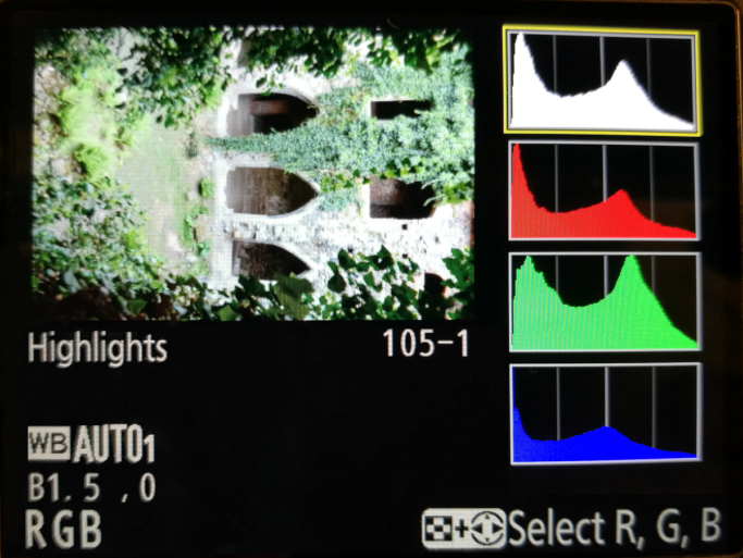 Showing the RGB histogram along with the brightness histogram and the highest brightnesses as well—one kind of histogram display offered on Nikon cameras. Here the green channel dominates the most, due to the large amount of green in the picture. But none of the RGB channels are overexposed.