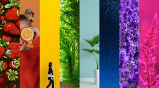 Zoner Photo Studio X:3つの強力な色編集ツール