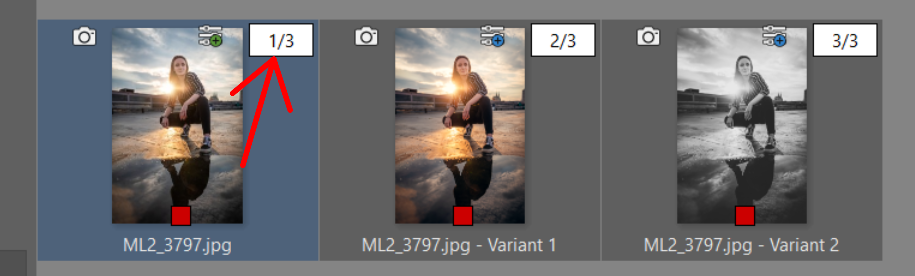 Variants: Create Multiple Versions of a Photo's Edits